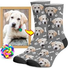 dog face | facecustomsocks.com