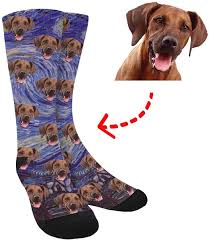 dog sock | facecustomsocks.com